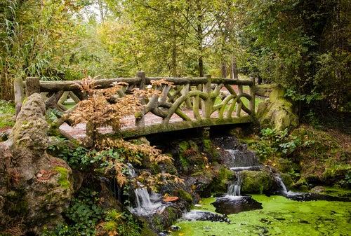 Bosque de Vincennes en París