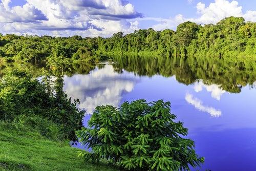 Descubrimos los increíbles paisajes de Surinam