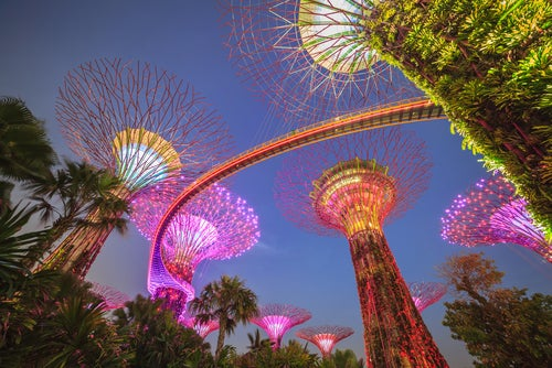 Gardens by the Bay por la noche