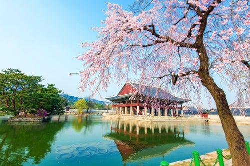 7 razones para visitar Seúl, una ciudad increíble