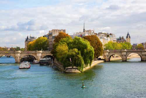 Qué ver en la preciosa isla de la Cité de París