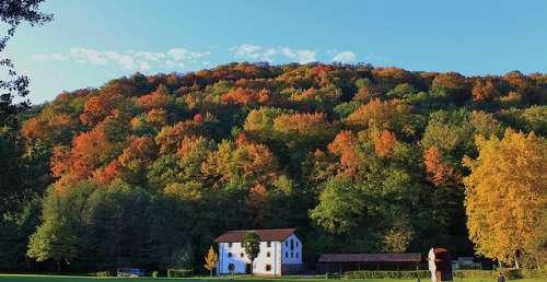 El hermoso Parque Natural del Señorío de Bértiz en Navarra