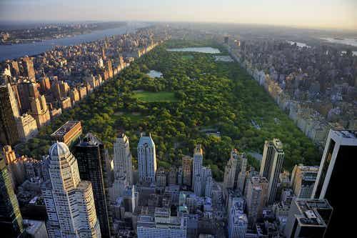 Con estas 6 cosas disfrutarás de Nueva York