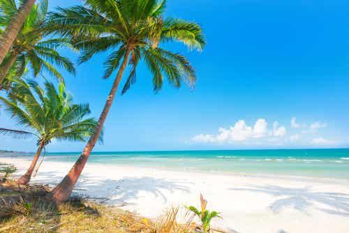 Disfruta del 2017 en estas 7 fantásticas playas