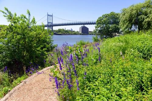 Triboroug Bridge en Nueva York