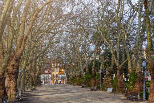 Jardim da Cordoaria en Oporto