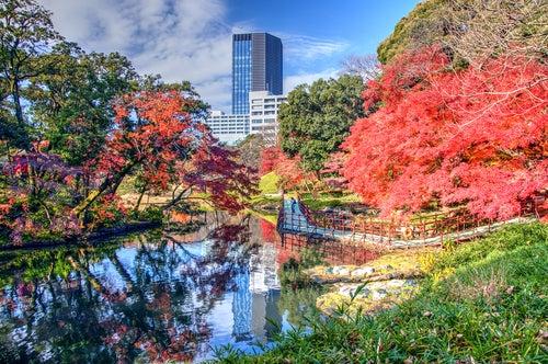 Koishikawa Korakuen en Tokio