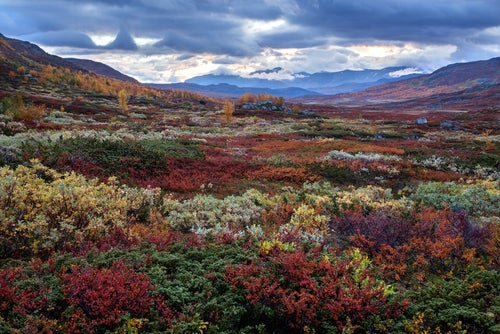 10 lugares que te enamorarán de Suecia