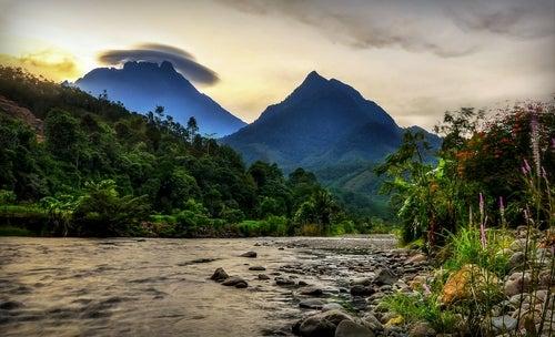 Tambatuon en Borneo