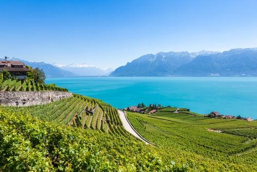 Lago Lemán en Suiza