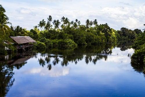 Borneo, viajamos a una isla espectacular