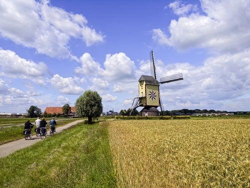 6 rutas para recorrer Holanda en bicicleta