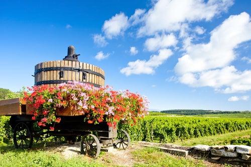Cote de Beaune en Borgoña