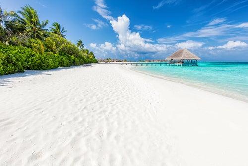 Islas Maldivas, descubre el paraíso en la tierra