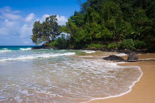 Red Frog Beach en Bocas del Toro