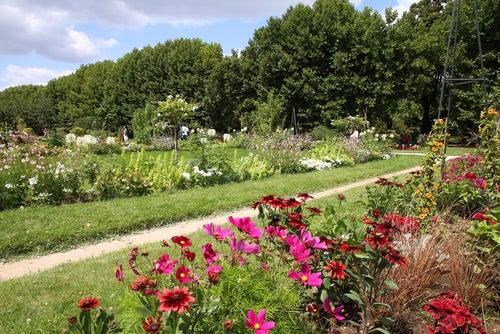 Jardin des Plantes de París
