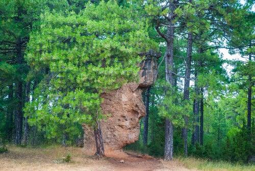 Roca con forma de rostro en la Ciudad Encantada