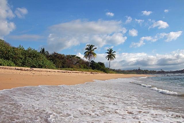 Playas de Costa Rica, Nosara