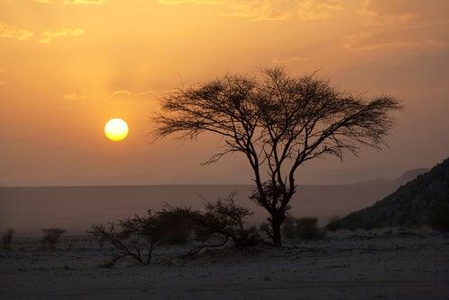Desierto de Sahara en Níger, uno de los países menos conocidos
