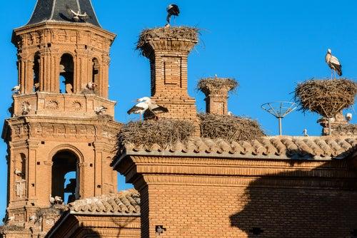 Vista de Alfaro en La Rioja