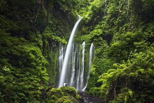 Cascadas en Lombok