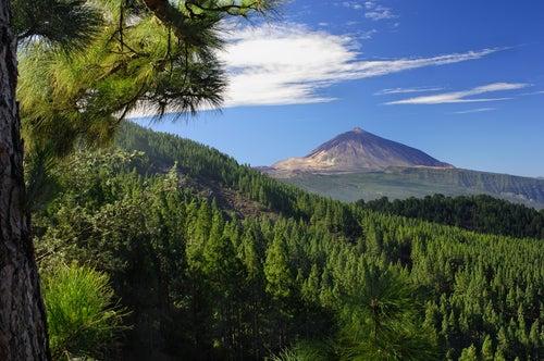 El Teide en el norte deTenerife