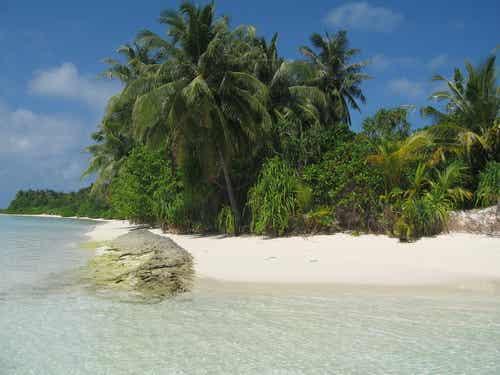 Descubrimos la isla de Robinson Crusoe