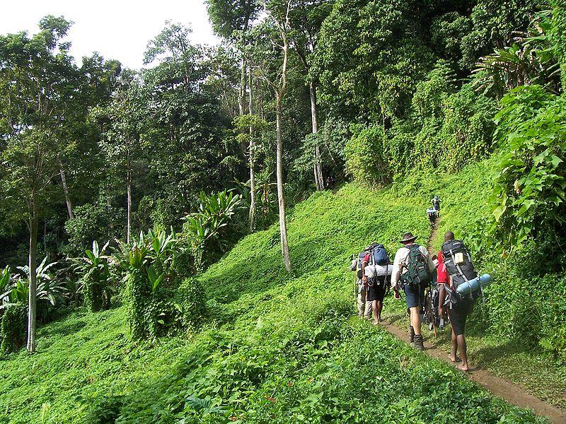 Sendero Kokoda en Paúa Nueva Guinea