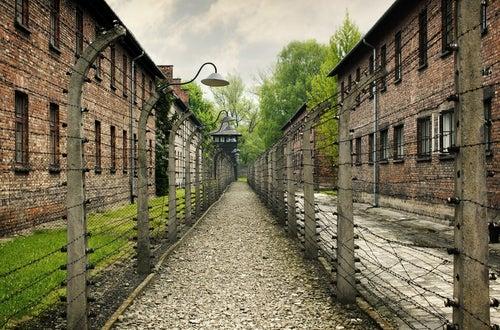 Auschwitz, escenario de la Segunda Guerra Mundial
