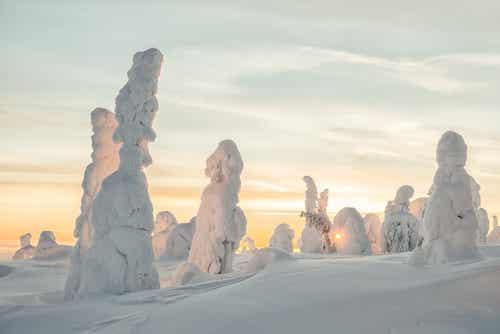 ¿Has oído hablar de los centinelas de Finlandia?