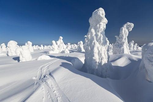 Centinelas de Finlandia