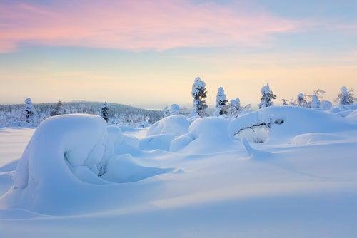 Centinelas de Finlandia con cinturón de venus