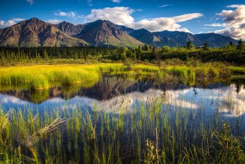 Fotos de Alaska, Parque Denali