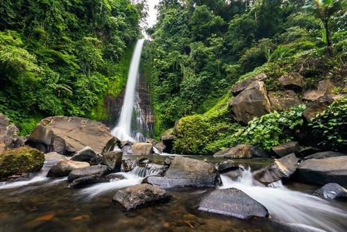 Cascada Git Git en la isla de Bali