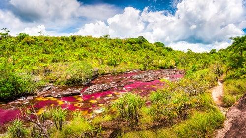 Caño Cristales en Colombia