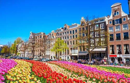 Parque de tulipanes en Ámsterdam