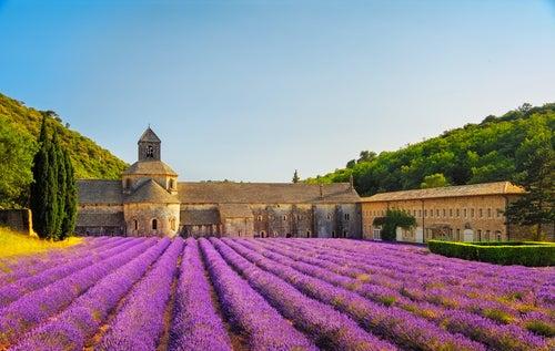 Monasterio de Senanque en la Provenza Francesa