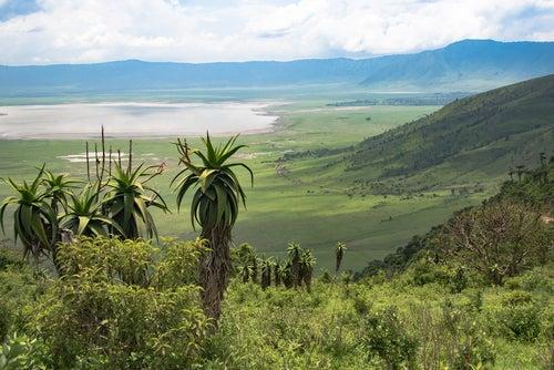 Cráter del Ngorondoro en el Parque Nacional Serengueti