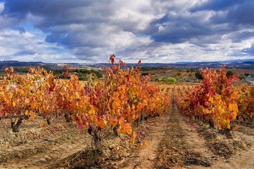 La Rioja en otoño