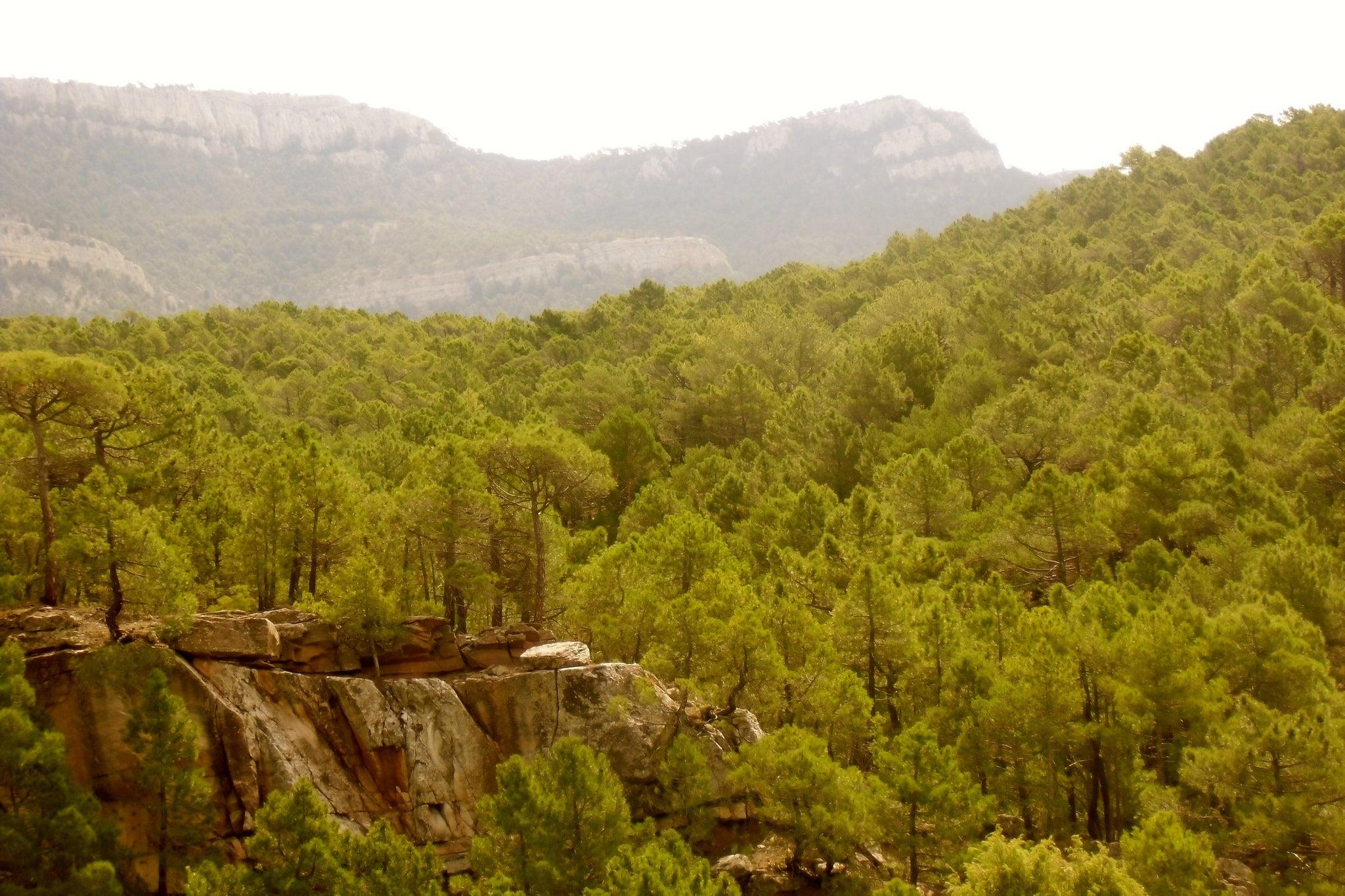 Sierra de Gúdar cerca de Rubielos de Mora