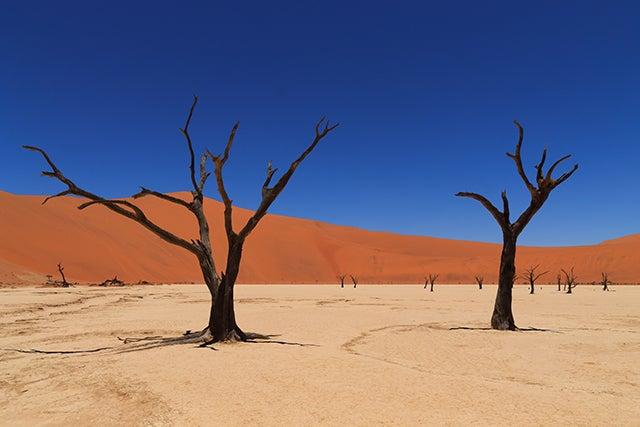 Dead Veli en Namibia