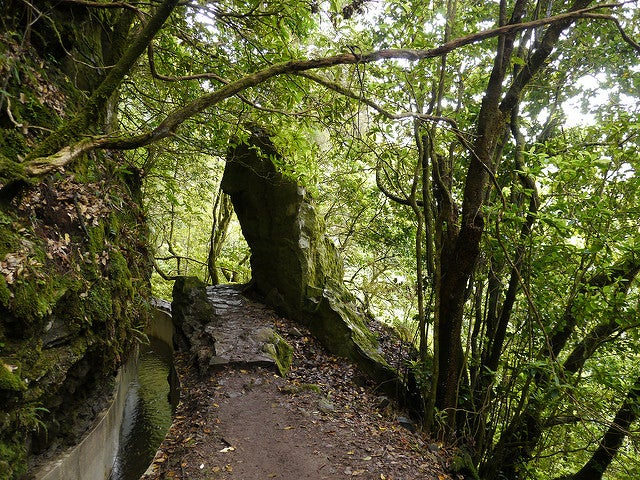 Levada do Furado en Madeira