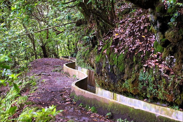 Levada, rutas de senderismo en Madeira