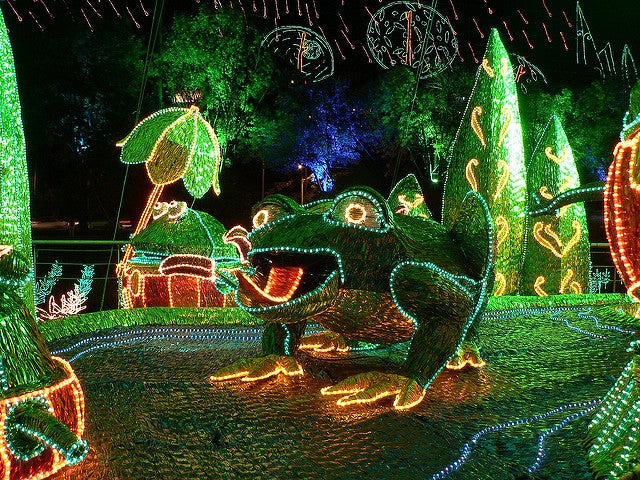 Luces de Medellín en Navidad