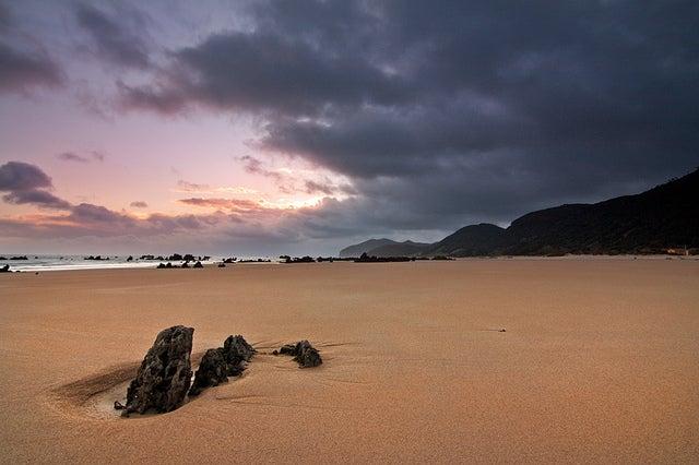 Noja en la costa de Cantabria