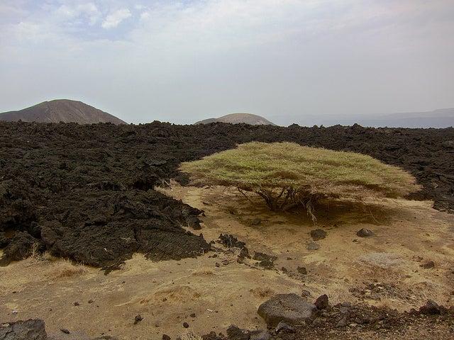 Paisaje volcánico en Yibuti