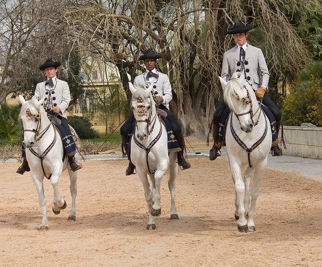 Real Escuela de Arte Ecuestre de Jerez de la Frontera
