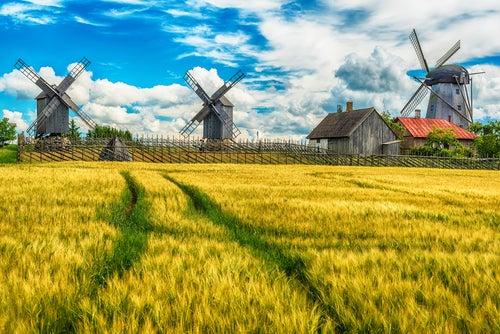 Isla Saarema en Estonia, Países Bálticos