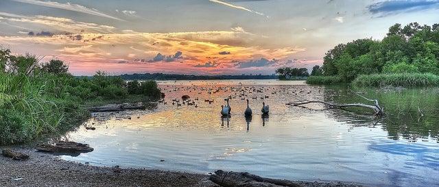 Lago White Rock en Dallas