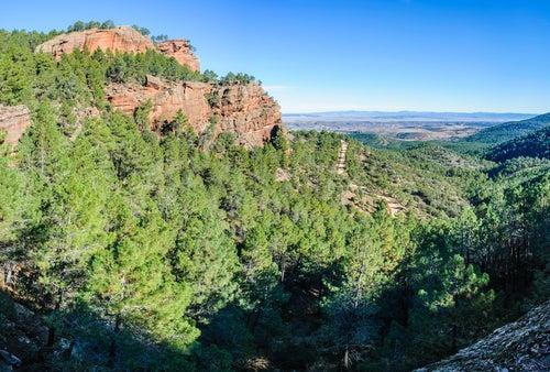 Pinares de Ródeno cerca de Albarracín
